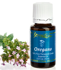Oil-of-Oregano
